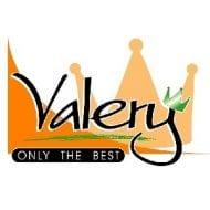 logo_valery